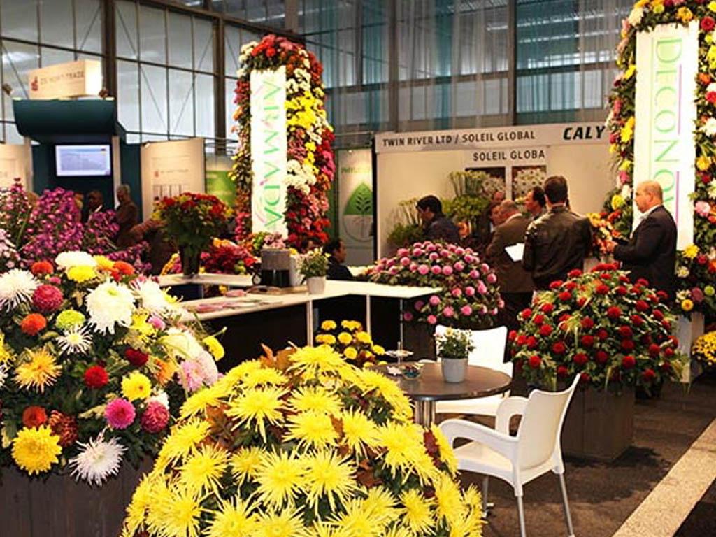 Visit DecoNova At The Royal Flora Holland Tradefair In Aalsmeer
