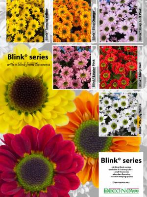 Leaflet-Blink-Serie