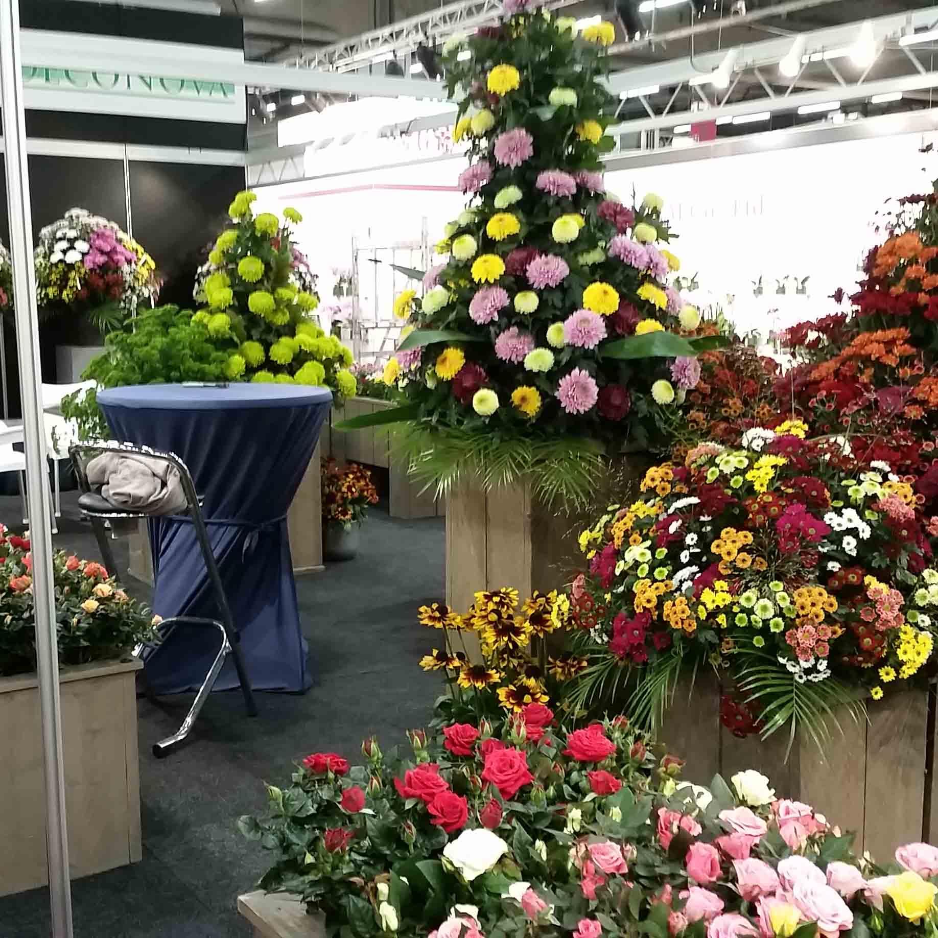 Bezoek DecoNova Op Royal Flora Holland Tradefair In Aalsmeer